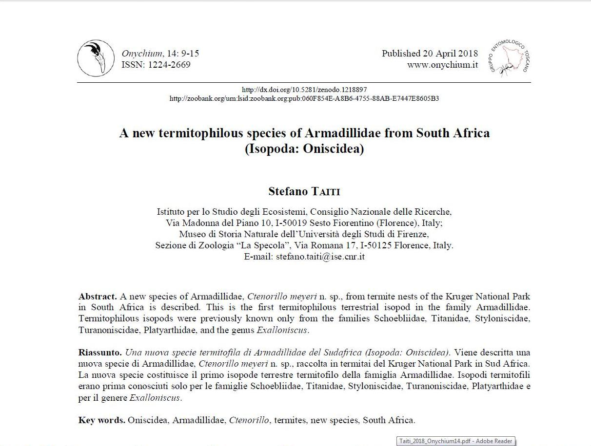 A new termitophilous species of Armadillidae from South Africa (Isopoda: Oniscidea)